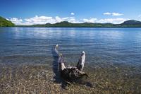 北海道 屈斜路湖 和琴半島