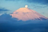 神奈川県 金時山より紅富士と満月