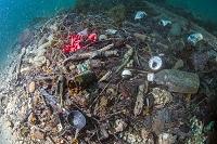 熊本県 海に沈むゴミ