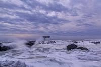 茨城県 大洗海岸 大洗磯前神社の鳥居