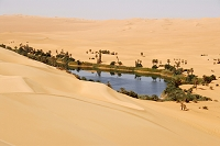 リビア 砂漠の中のオアシス