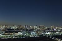 東京都 豊洲市場と豊洲、晴海周辺のビル群 夜景