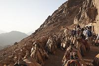エジプト シナイ山
